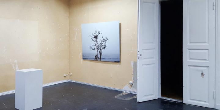 Julia Weckman mukana Taiteilijakollektiivi Kunstin näyttelyssä Unconstruction Site Galleria Lapinlahdessa 9.-27.1.2019
